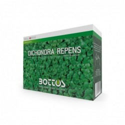 DICONDRA REPENS - Bottos / 500 gr