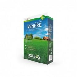 VENERE - Bottos / 1 Kg