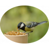 Koppert & Appi - Acari predatori, integratori alimentari, repellenti naturali, nematodi, fertilizzanti
